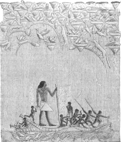 HUNTING IN THE MARSHES. TOMB OF TI, SACCARAH